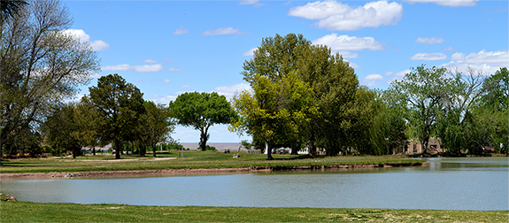Pond and several trees surrounding a golf course